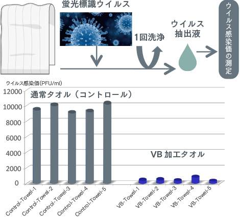 ウイルスの溶液に浸し、1回洗浄をしたタオルからの抽出液でウイルスの感染価(感染力)を試験したグラフ。